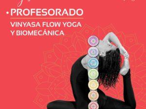Profesorado de Yoga