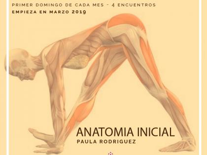 Anatomía Inicial