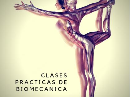 Clases Practicas de Biomecanica