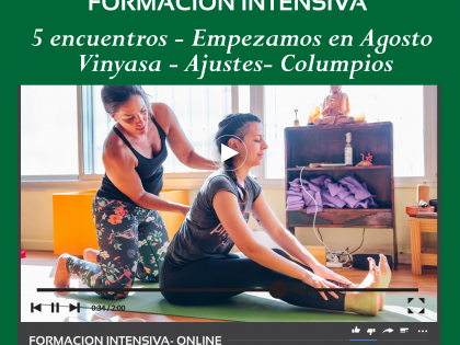 Curso Intensivo de Ajustes Columpios Vinyasa