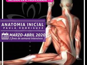 Anatomía Inicial – Presencial