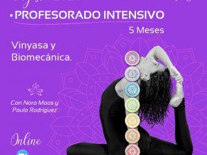 Profesorado Intensivo – Vinyasa y Biomecanica
