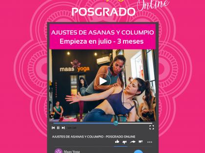 Curso Online de Ajustes de Asanas y Columpio